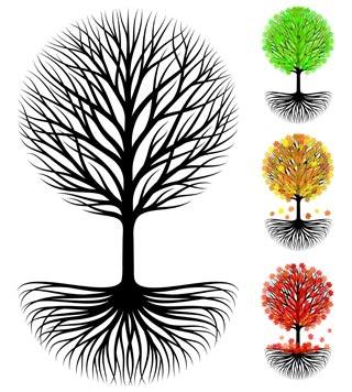 OS-tree